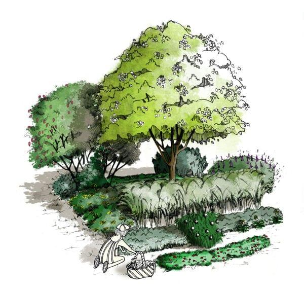 Une guilde -Permaculture Design