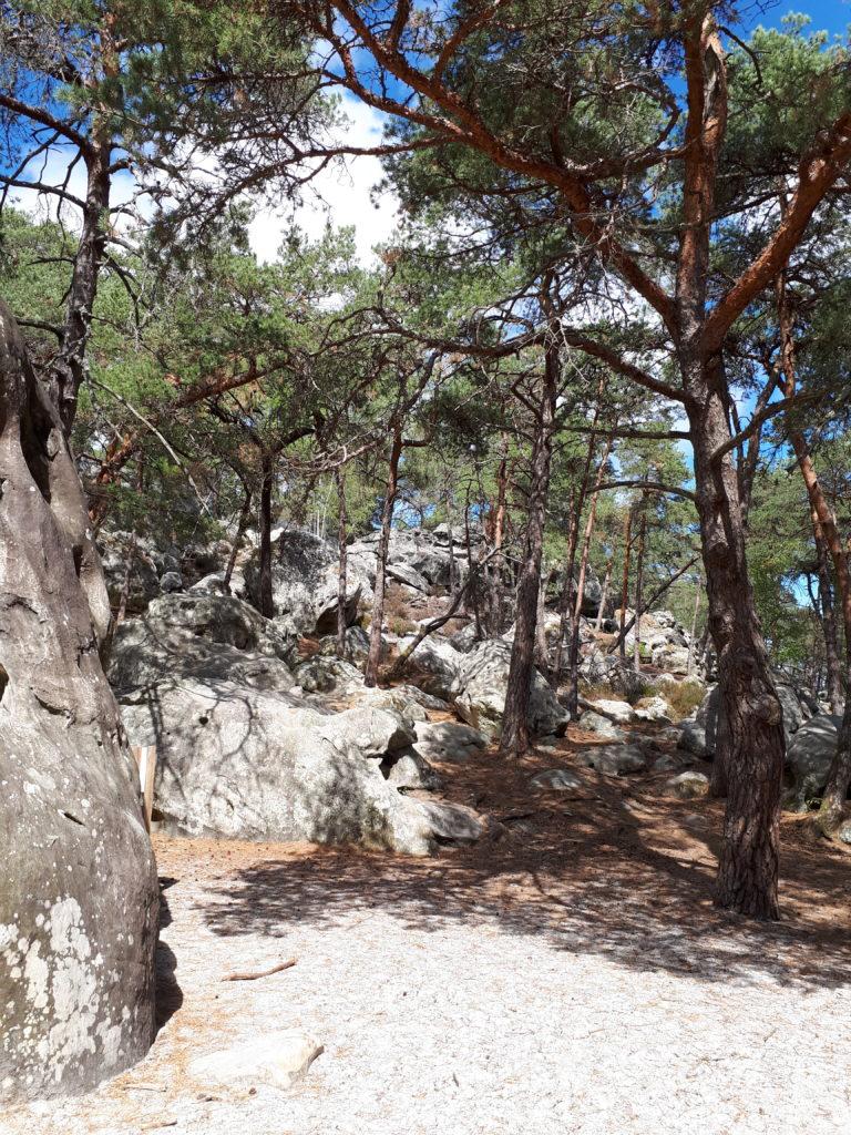 Les roches de Larchant