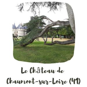 le chateau de Chaumont sur Loire